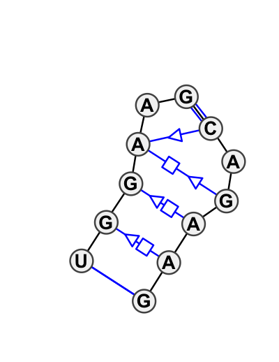 IL_81728.1