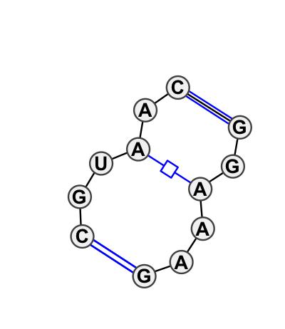 IL_05865.1