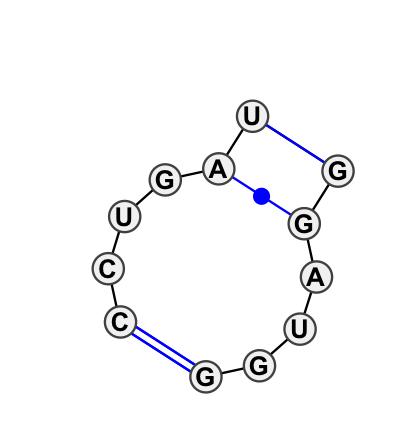 IL_13608.1