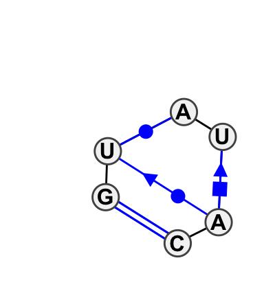 IL_21341.1