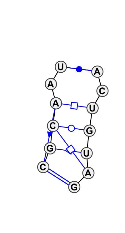 IL_30028.1