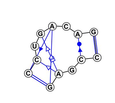 IL_35361.1
