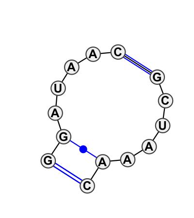 IL_63662.1