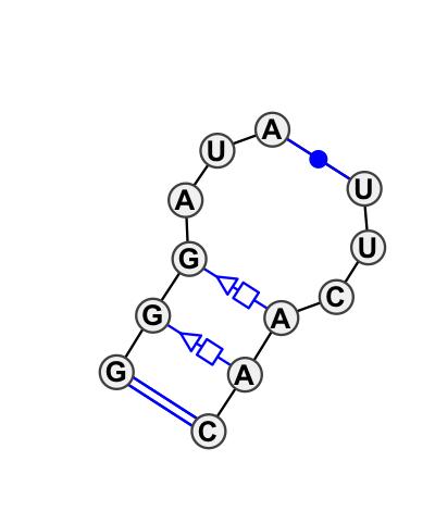 IL_65001.1