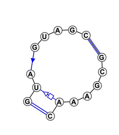IL_65375.1