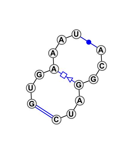 IL_84840.1