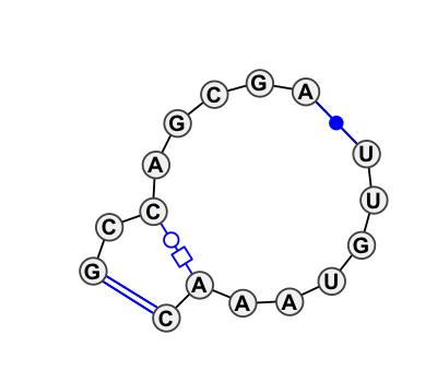 IL_87056.1