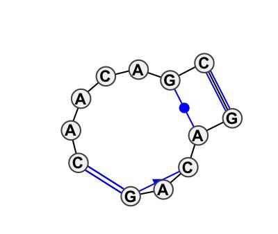IL_39165.1