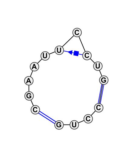 IL_75688.1