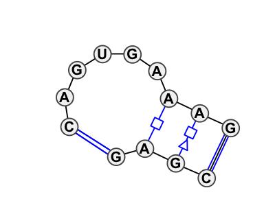 IL_02835.1