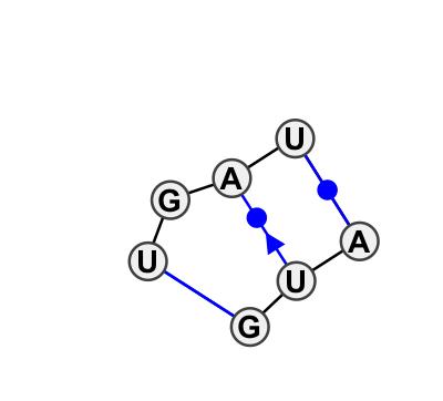 IL_50911.1