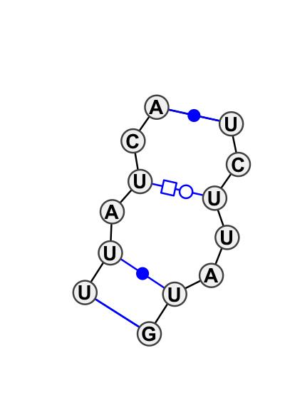 IL_25181.1