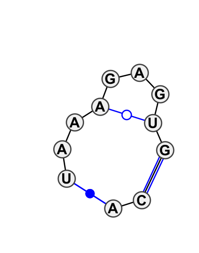 IL_70401.1