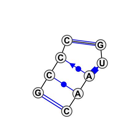IL_54966.1