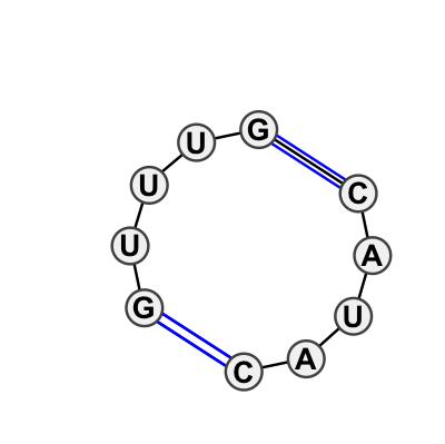 IL_39439.1