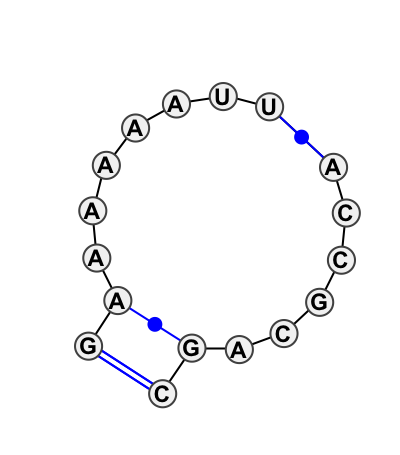 IL_57625.1