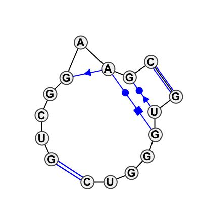 IL_63366.1