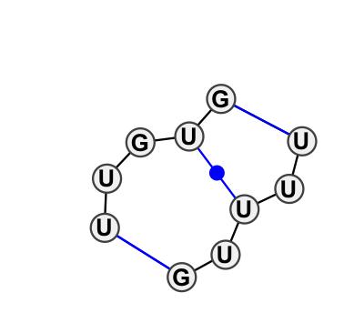 IL_66775.1