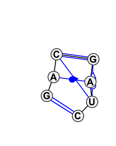 IL_81956.1
