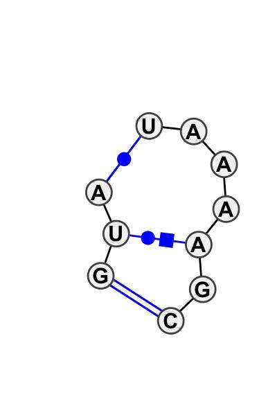 IL_58203.1