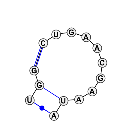 IL_69236.1