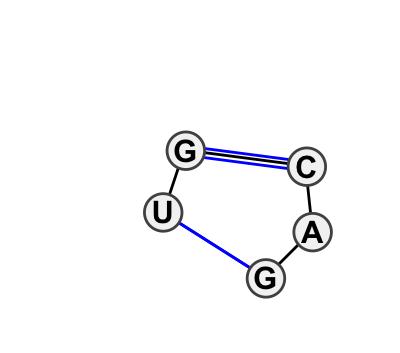 IL_28644.1