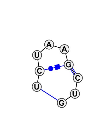 IL_41341.1