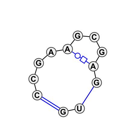 IL_05513.1