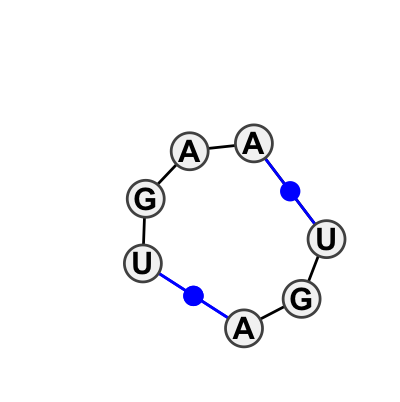 IL_41153.1