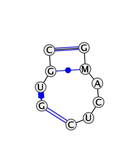 IL_31101.1