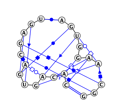 IL_31660.1
