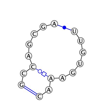 IL_65060.1