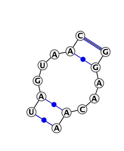 IL_06267.1