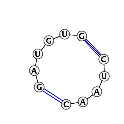 IL_08061.1