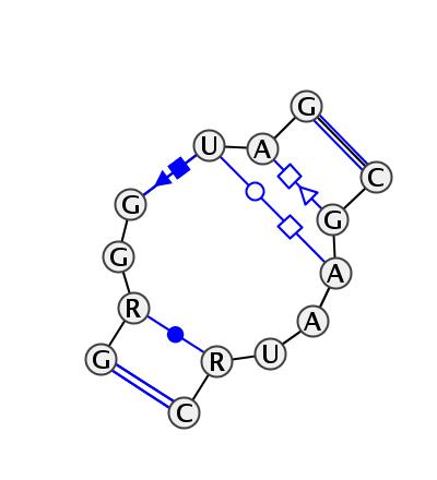 IL_93830.1