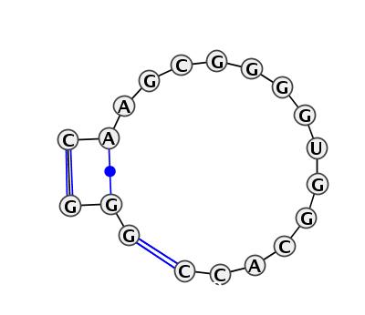 IL_00559.1