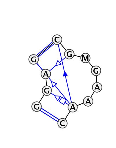 IL_35904.1