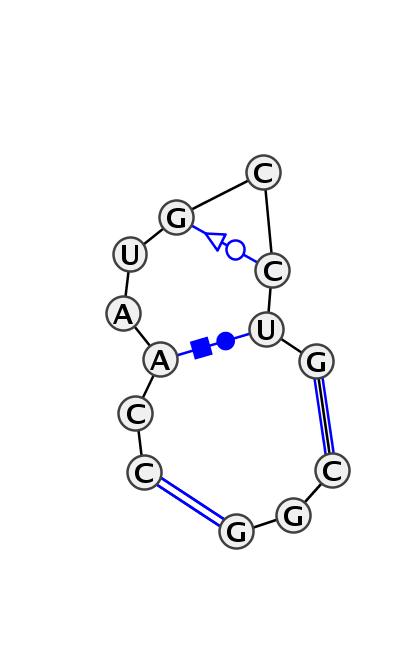 IL_45481.1
