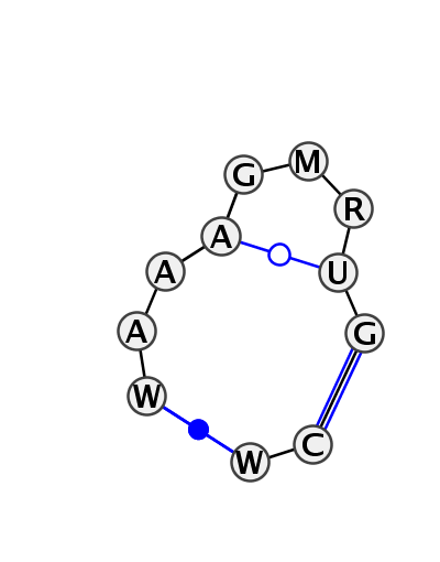IL_58960.1