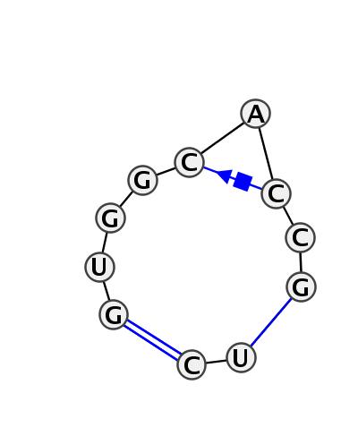 IL_01560.1
