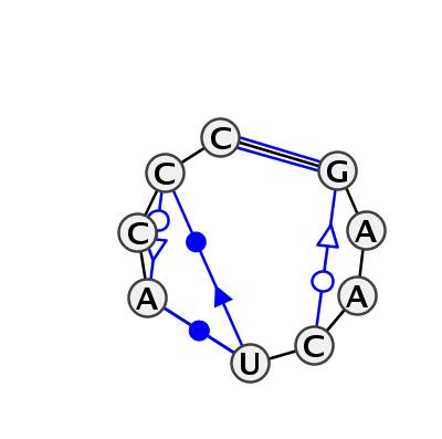 IL_35058.1