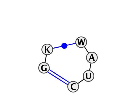 IL_91036.1